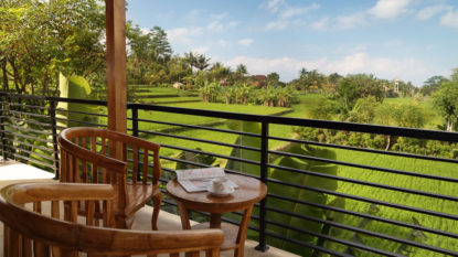 Nice 2 bedroom house in Ubud with rice field view