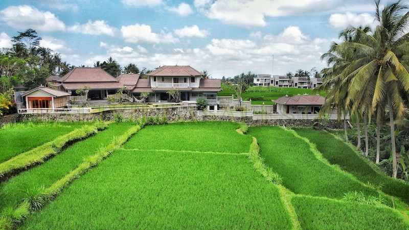 Freehold – four + one bedrooms in Ubud